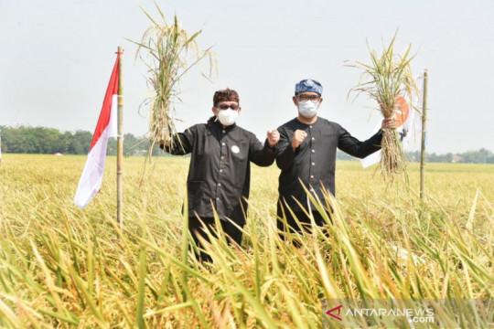 Salim Segaf tekankan pentingnya regenerasi petani milenial