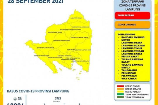 Dinkes Lampung catat 35 penambahan kasus harian COVID-19