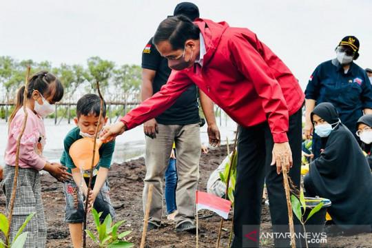 BRGM optimis target rehabilitasi 34 ribu hektare mangrove tercapai