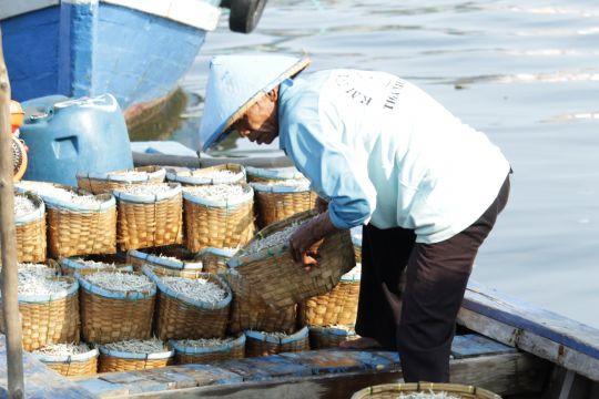 Ekspor perikanan Lampung pada 2021 bertumbuh