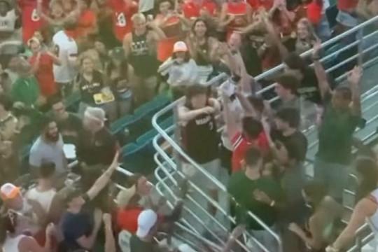 Aksi penyelamatan kucing yang jatuh di Stadion Hard Rock