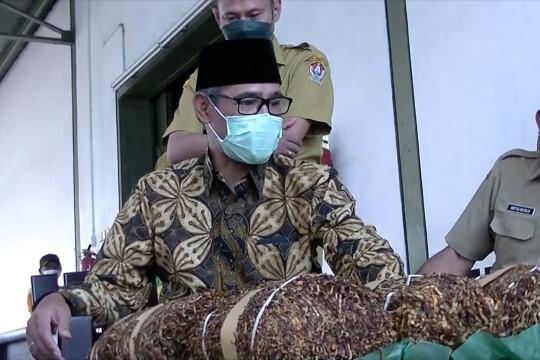 Bupati Temanggung minta petani tingkatkan kualitas tembakau
