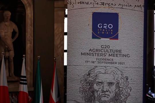 Hadiri pertemuan G20, Mentan dorong penghapusan kelaparan global