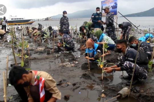 Sering dieksploitasi, Lanal Ternate tanam 1.000 bibit mangrove