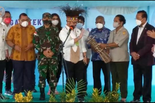 Mentan dorong Papua tak hanya bergantung ke tambang