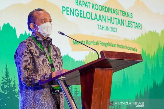 KLHK: Kehutanan berperan penting tingkatkan ekonomi saat pandemi