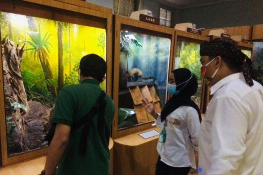 Pemkot Bogor tunggu kajian IPB dan BRIN tentang wisata Glow Kebun Raya