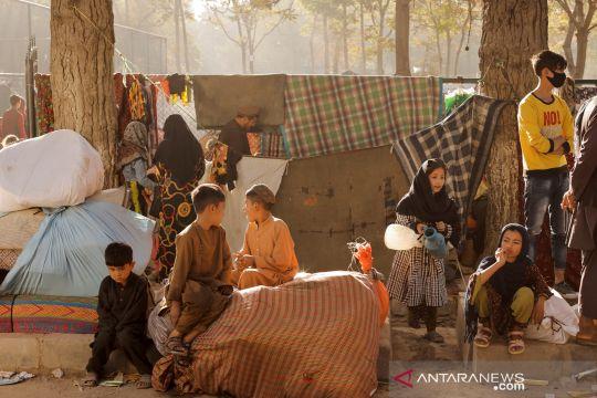 Palang Merah desak dunia bekerja dengan Taliban demi kemanusiaan