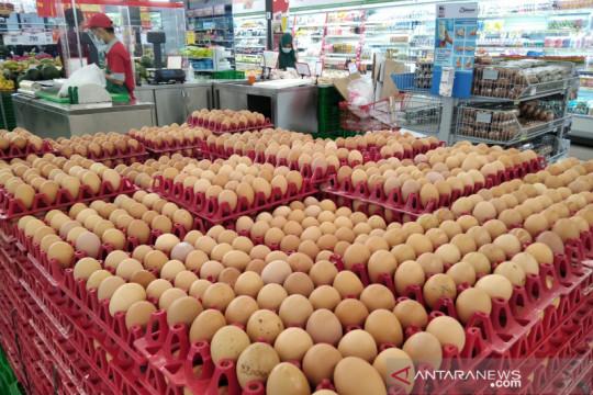 Pataka minta pemerintah kaji kebijakan stabilisasi harga ayam-telur