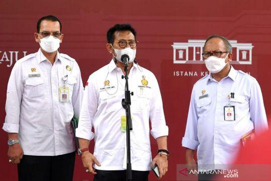 Presiden Jokowi minta Mentan tingkatkan kapasitas produksi jagung
