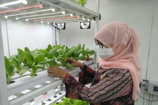 "Kadis KPKP DKI Jakarta resmikan ""container farming"" di Ragunan"