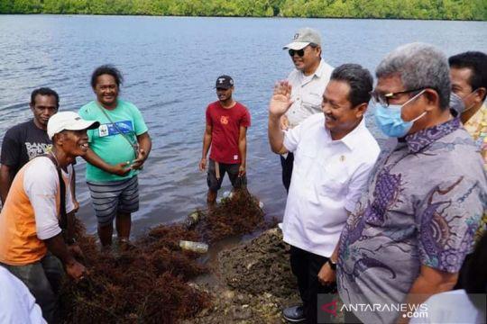 Menteri KKP ingin petani rumput laut di Maluku Tenggara sejahtera