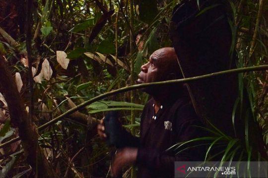 Alex Waisimon menjaga cenderawasih dan hutan Papua lestari