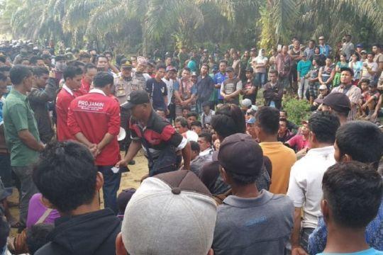 DPRD Riau membentuk pansus atasi konflik lahan perkebunan