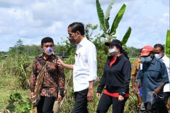 Stafsus Presiden ungkap aksi Jokowi di Papua yang tidak terekam kamera