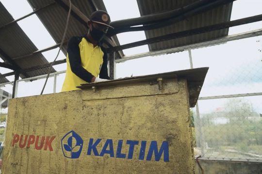 Pupuk Kaltim gelar pelatihan pembuatan dry maggot untuk urai sampah
