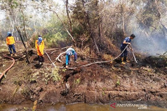 Lahan gambut terbakar di Aceh Barat bertambah menjadi 2,2 hektare