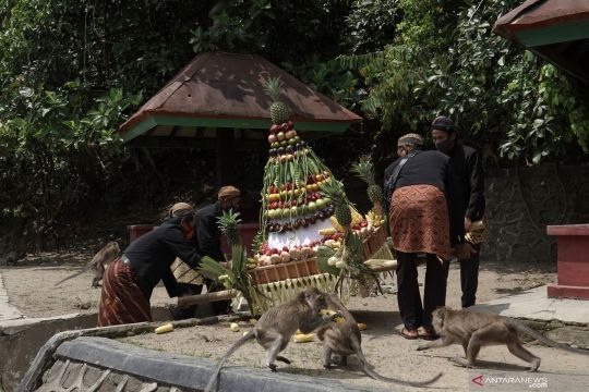 Pengamat: Wacana Sandiaga kembangkan Desa Wisata Cikakak sangat tepat