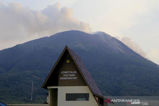 Gunung ili Lewotolok erupsi lagi, tinggi kolom abu hingga 800 meter