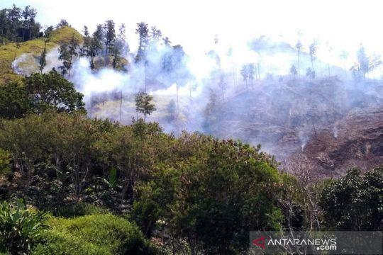 BPBA: Api hanguskan 25 hektare hutan lindung di Aceh Tengah padam
