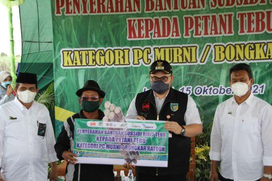 PTPN X beri subsidi bibit tebu unggul kepada 385 petani