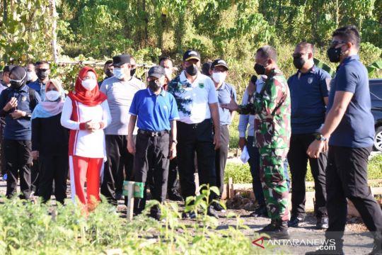 Wapres apresiasi kebun dan ketahanan pangan Kodam Kasuari  Papua Barat