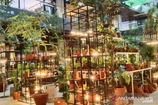 DKI ajak warga manfaatkan atap gedung untuk pertanian perkotaan