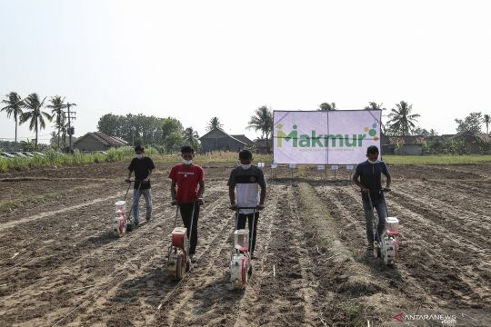 Program Makmur untuk petani di tanah air