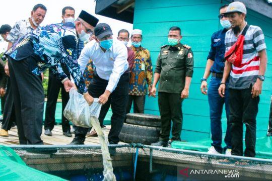 Pemkab Nagan Raya tebarkan 110 ribu bibit Ikan nila di Danau Laut Tadu