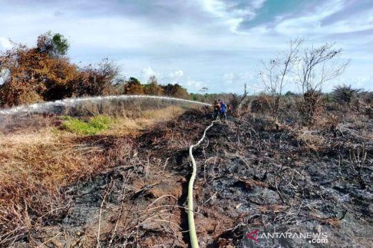 BPBD: Kebakaran lahan gambut di Aceh Barat 100 persen sudah padam