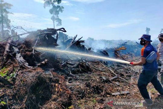 Lahan gambut seluas 20 hektare terbakar di Nagan Raya Aceh