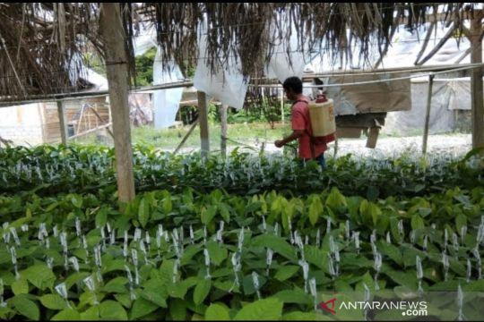 Petani milenial di Maros Sulsel menerima dana hibah pemkab