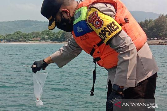 Ribuan benur lobster hasil penyitaan dilepasliarkan Polres Sukabumi