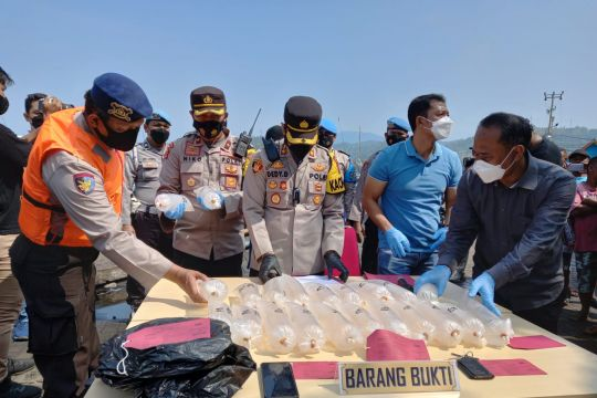 Polisi gagalkan penyelundupan 4.300 benur lobster dari Sukabumi