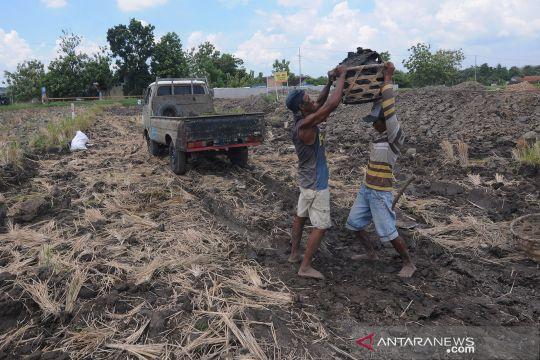 Warga manfaatkan lapisan tanah proyek tol Solo-Jogja untuk bahan batu bata