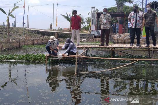Undip ubah selokan kumuh di Kudus jadi kolam ikan dan budi daya azolla