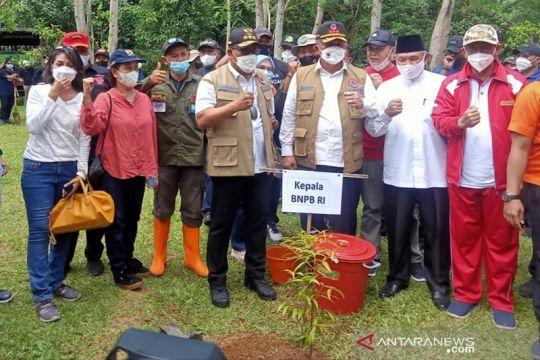 Kepala BNPB - Gubernur Maluku tanam pohon perkuat mitigasi bencana