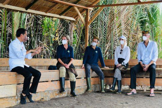 Para dubes negara sahabat apresiasi penanaman mangrove oleh Indonesia