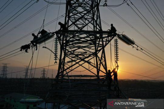 Arah kebijakan energi nasional dukung transformasi ekonomi hijau