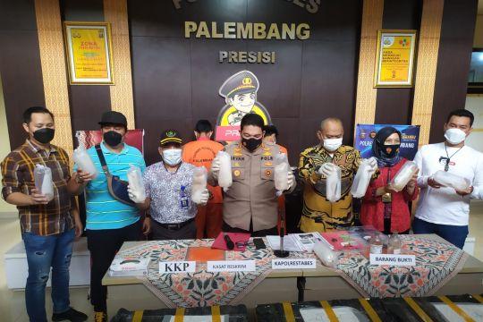 Polisi tangkap dua tersangka penyelundupan benih lobster Rp15 miliar