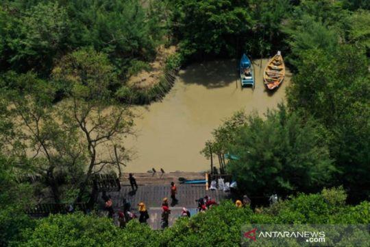 Dua kebun raya mangrove Surabaya serap ribuan ton emisi karbon