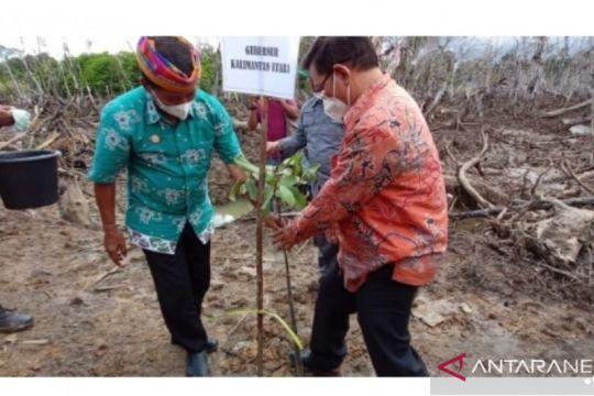 Gubernur dan Forkopimda Kaltara tanam ribuan bibit bakau di Bulungan