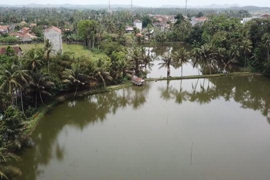 Menjaga kelestarian ekosistem perairan dengan budidaya