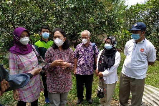 "Tim ""DOKAR"" UB kenalkan agroforestry kombinasi pada petani Kota Batu"
