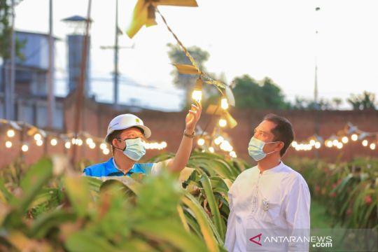 PLN catat 148 ribu petani gabung program listrik agrikultur