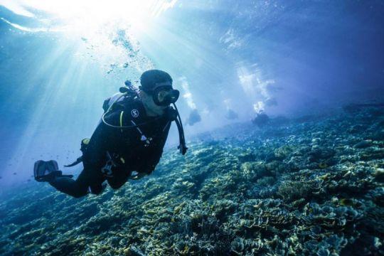 Menparekraf sebut potensi wisata bahari Raja Ampat sangat besar
