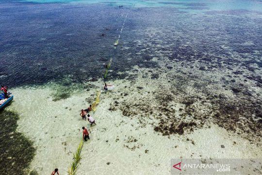 Wer Warat bentuk kearifan lokal nelayan di Maluku