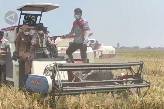 Mentan bangga petani mampu bertahan di tengah pandemi