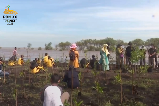 KLHK bersama BRGM percepat langkah rehabilitasi mangrove
