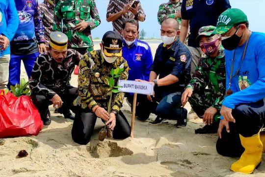 Penanaman mangrove di Bangka warnai HUT ke-76 TNI
